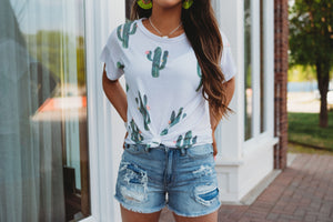 All things cactus top
