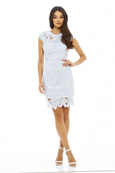 Capped Sleeved Crochet Dress