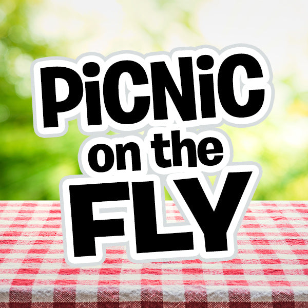 Box of Fun: Picnic on the Fly