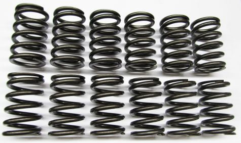 M30 Heavy Duty Single Valve Spring Set