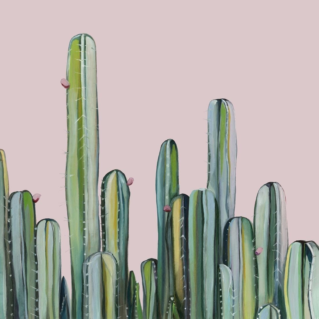Cactus Field by Kate Jarman | Shop Prints | Greenhouse Interiors