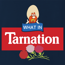 funny Yosemite Sam What In Tarnation? Looney Tunes Mashup men's t-shirt