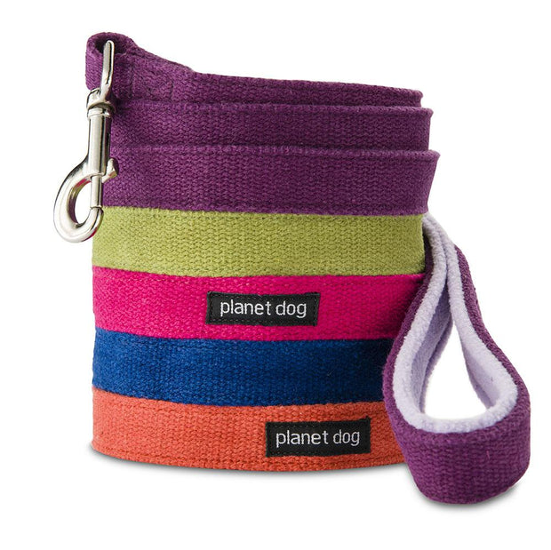 Natural, Eco-Friendly Hemp Leash in Grape - This Dog's Life