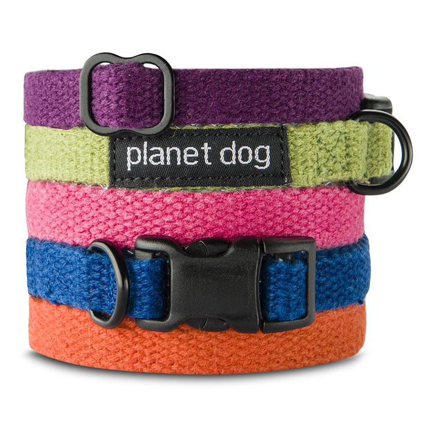 Natural, Eco-Friendly Hemp Collar in Tangerine - This Dog's Life