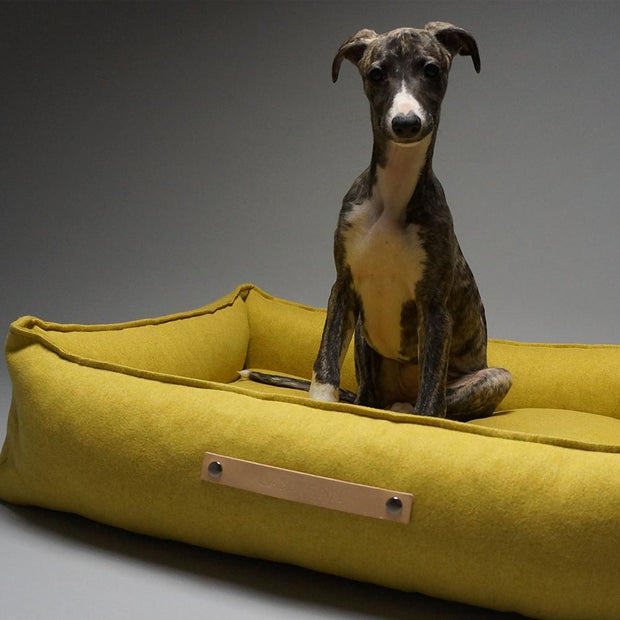 Luxury Modern Dog Bed in Mustard - This Dog's Life