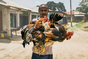Man With Roosters