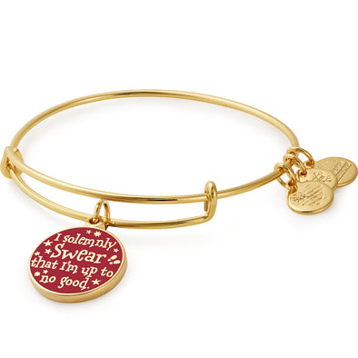 Harry Potter ALEX AND ANI HARRY POTTER Mischief Managed - Accio This