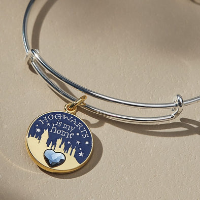 Harry Potter ALEX AND ANI HARRY POTTER Hogwarts is My Home Two Tone Charm Bangle - Accio This