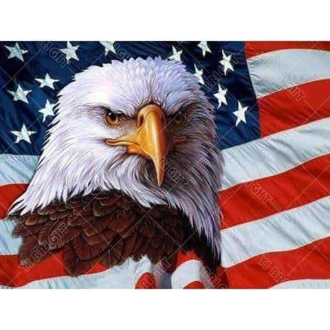 Image of Eagle USA - DIY 5D Diamond Painting - Full Drill-EasyWhim