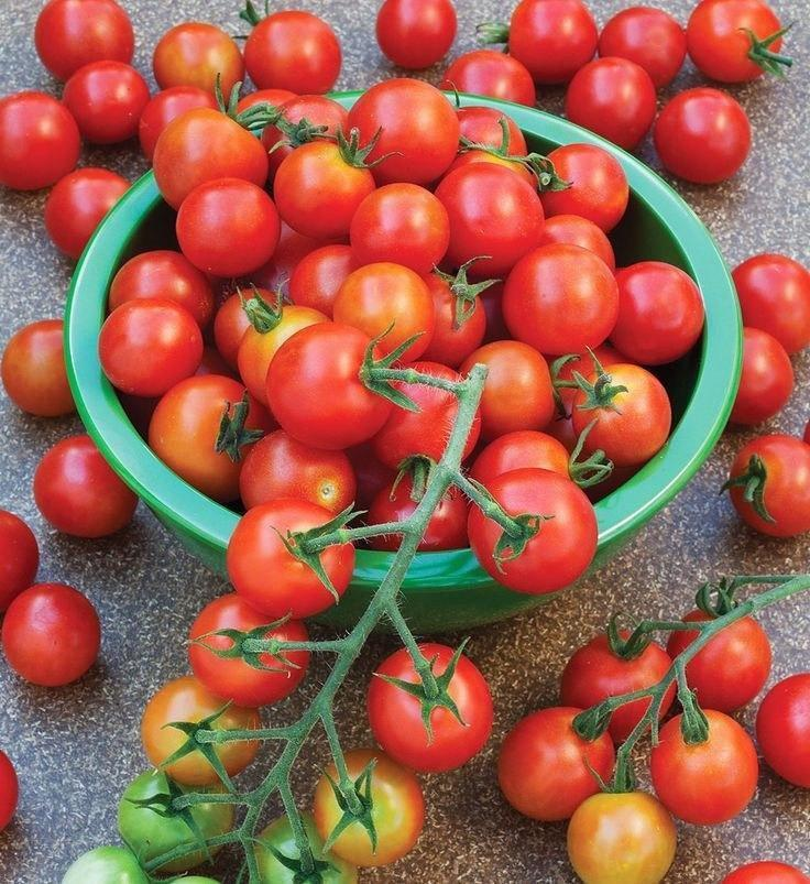 Vegetable Seeds - Imported RED Cherry Tomato Seeds