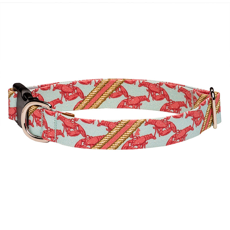 Our Good Dog Spot Boothbay Lobster Dog Collar