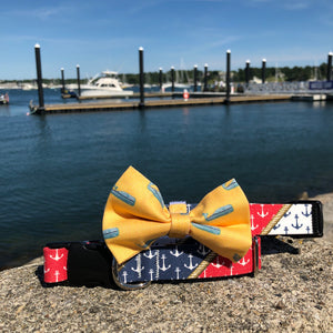 Our Good Dog Spot Nautical Pride Dog Collar and Yellow Nantucket Whale 23 Bow Tie