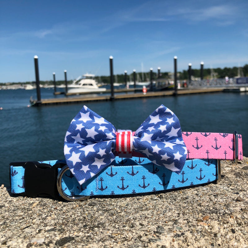 Our Good Dog Spot Pink and Blue Anchors Aweigh Dog Collars and Stars and Stripes Forever Bow Tie