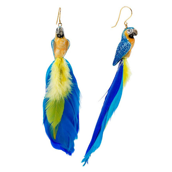 Blue and Yellow Parrot with feather earrings