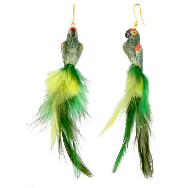 Green Parrot with feather earrings
