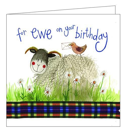 Alex Clark for her For Ewe on your Birthday sheep Happy Birthday card Nickery Nook