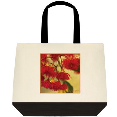 Homewares - 'Painted Gumnut'  Tote