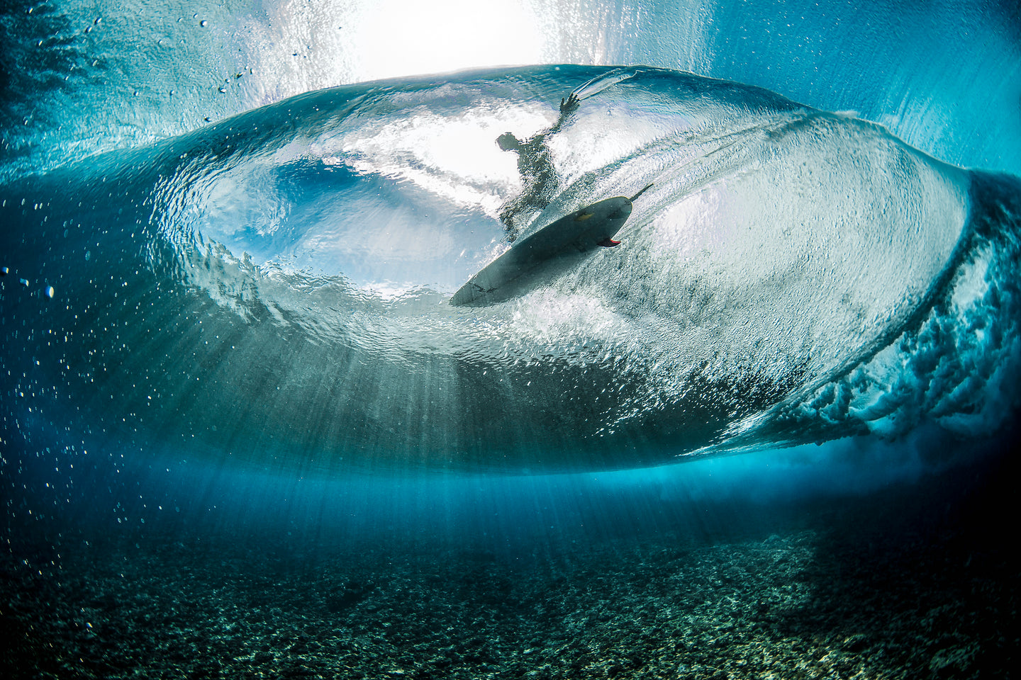 Picture of a surfer standing on a surfboard, taken from below.  Main photo on how page of Crepic website at livecrepic.com.  Taken by Ben Thouard