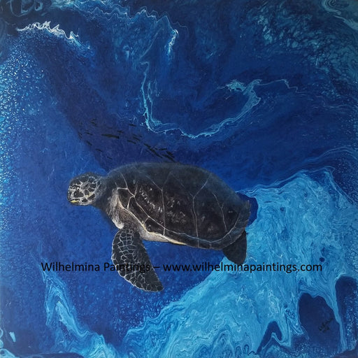 Flow - Sea Turtle
