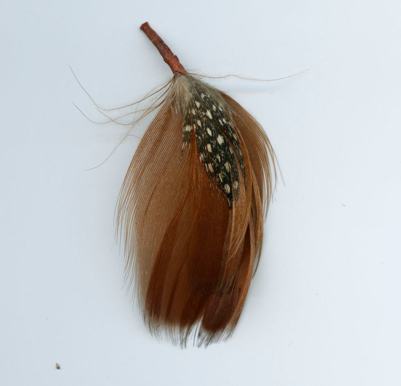 Fancy feathers assemblage. Perfect size for earrings. Average 2-3 inches. Pkg. of 2. b10-0384