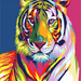 Colorful Abstract Resting Tiger