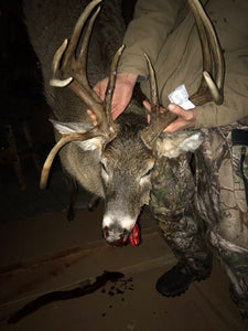 Mr Drop Tine Make it a 3-PEAT |  Wade Family Harvests 12 Point  Trophy Buck Using Buck Baits Estrus Max