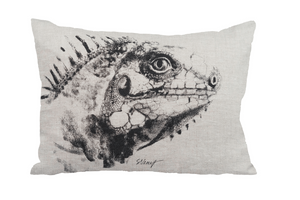 Iguana on pillow