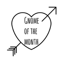 Gnome of the Month: JANUARY