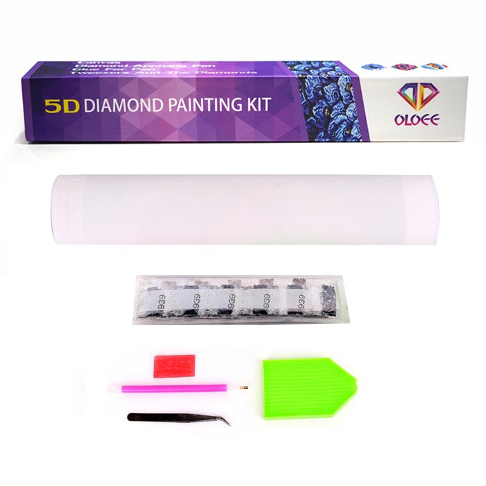 What Is Diamond Painting? The Definitive Guide | OLOEE