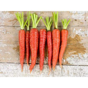 Carrots-Atomic Red