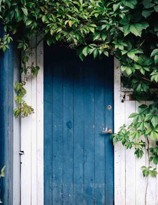 Garden Blue Wood Door White Wall Backdrop For Photography - Shop Backdrop