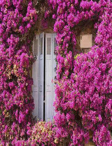 Purple Flowers  Around The Wood Door For Wedding Photo Backdrop
