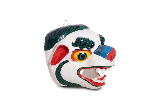 the snow lion mask in bhutan