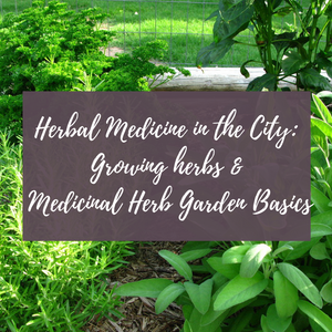 Herbal Medicine in the City: Growing Herbs & Medicinal Herb Garden Basics (June 5, 2019)