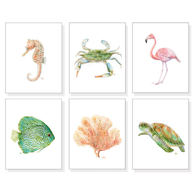 Beach Ocean and Sea Life Art Prints