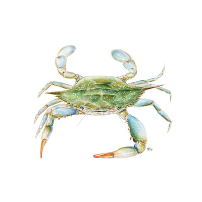 Crab Coastal Wall Decor