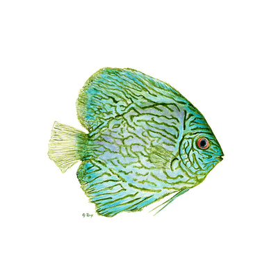 Green Tropical Fish Art Print