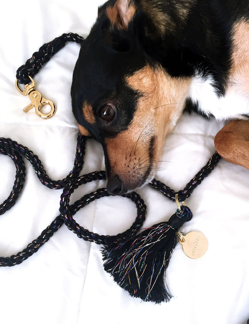 Satellite Leash | Black Sparkle
