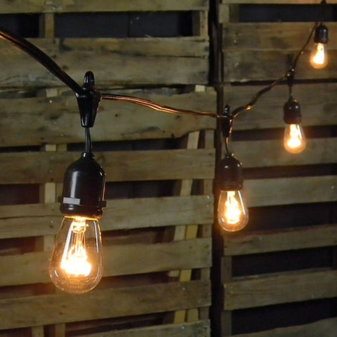 Commercial Globe String Lights, 25ft E12 Black Wire, G40 Bulbs, Clear
