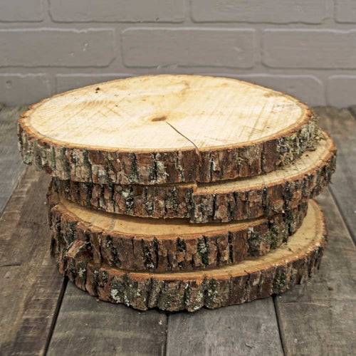 Wood Tree Round, Natural Basswood Slab, Rustic, 8 to 11 inch, Large