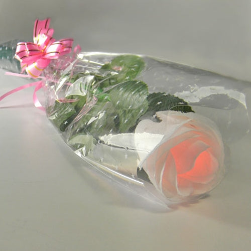 White LED Color Changing Rose, One Dozen Roses