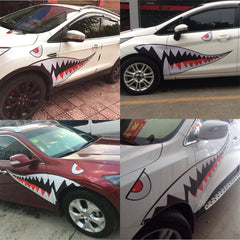 I am a Shark on The Road