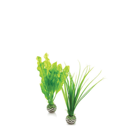 biOrb Easy Plant Set small green