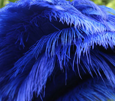 50pcs ostrich plume ostrich feathers 16-18inches/40-45cm royal blue feather high quality wedding decoration cosplay