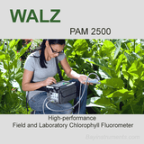 Walz PAM-2500 Fluorometer, Walz Fluorometers and Photosynthesis Equipment - Bay Instruments, LLC