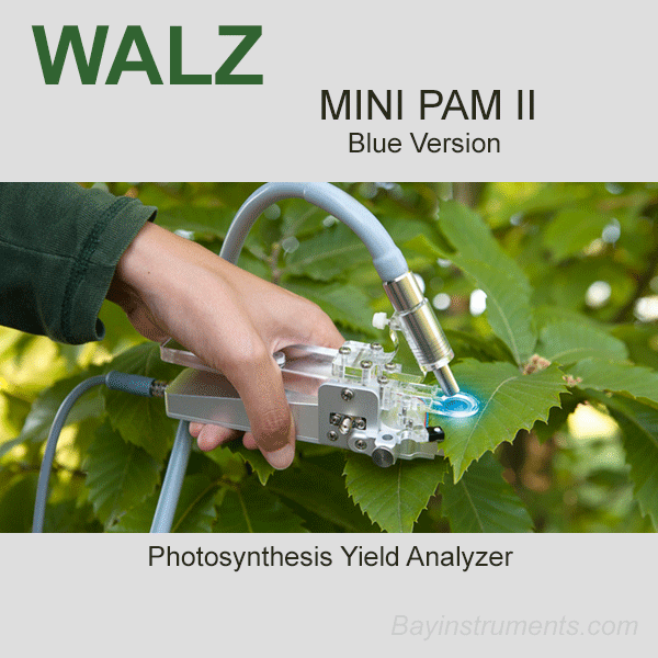 Walz MINI-PAM II Photosynthesis Yield Analyzer, Walz Fluorometers and Photosynthesis Equipment - Bay Instruments, LLC