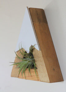 Mountain, Air Plant Holder, Nursery Decor, Office, Desk, Snow Peak, Boys Room, Forest Theme, Woodland, Gender Neutral, Plant Mom