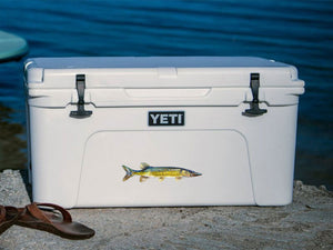 Chain Pickerel cooler decal