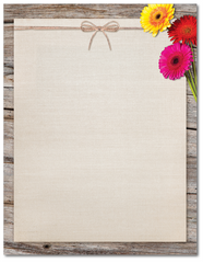 Flower Stationery - Three Gerber Daisies - 60lb Text