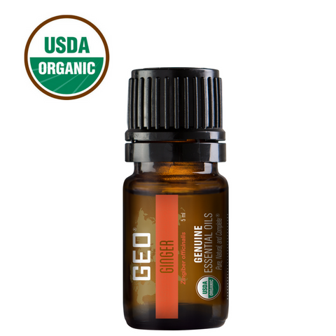 Ginger Organic Essential Oil - 5 ml